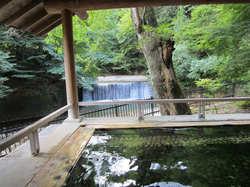 四万たむら 露天風呂 「森のこだま」