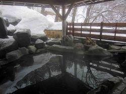 越後の奥座敷 和泉屋 温泉 写真