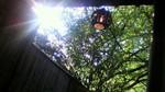 鷹の巣館 大浴場 露天風呂からの風景